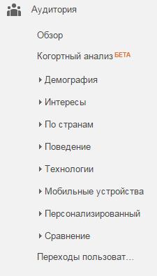 подраздел аудитория в гугл